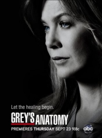 Greys Anatomy S08E04