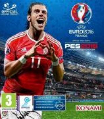 UEFA Euro 2016 France אחר