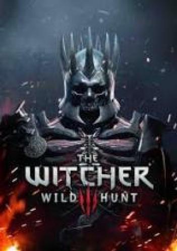 The Witcher 3 Wild Hunt אחר