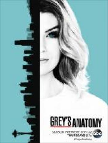 Grey's Anatomy 2005 - HDTV