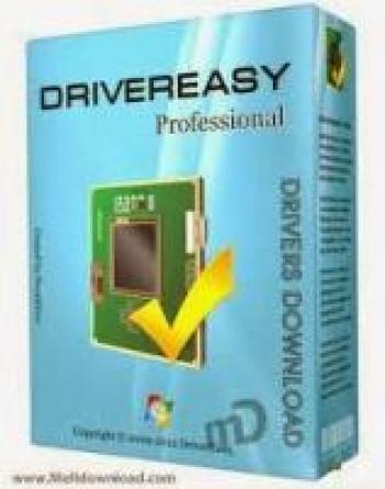 DriverEasy Professional