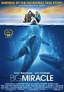 Big Miracle - DVDRip