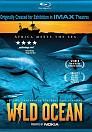 Wild Ocean DVDRip