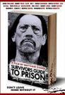 Survivors Guide to Prison 2018 - WEBDL - 720p
